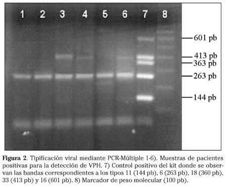 papilloma virus tramite saliva papillom entfernen mittel