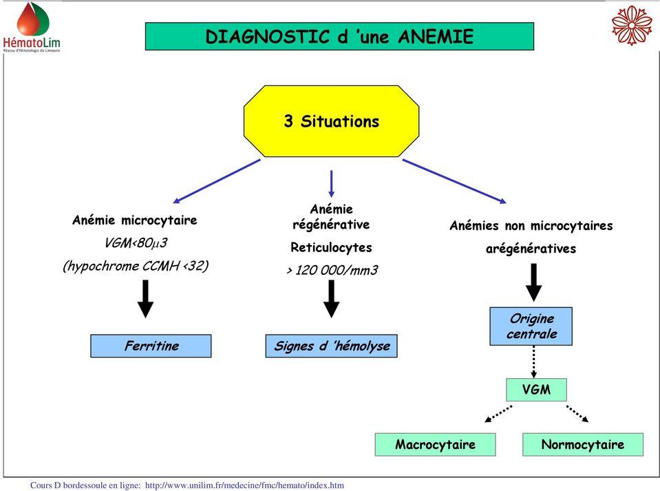 Anemie a regenerative