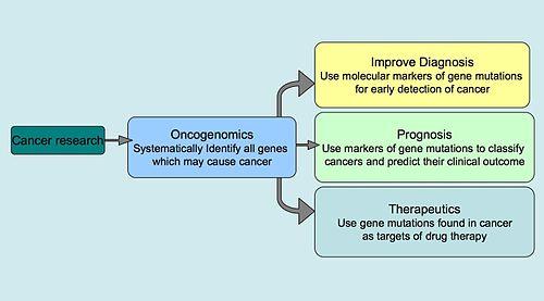 cancer genetic number que es oxiuros vermicularis