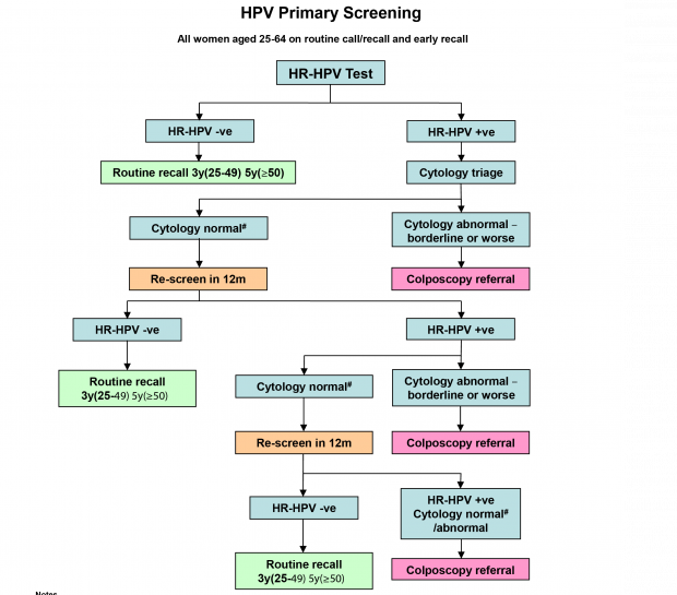 hpv testing for primary cervical cancer screening infection genitale papillomavirus
