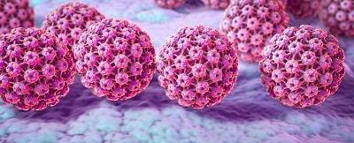 papiloma cancer uterino cancer renal gpc
