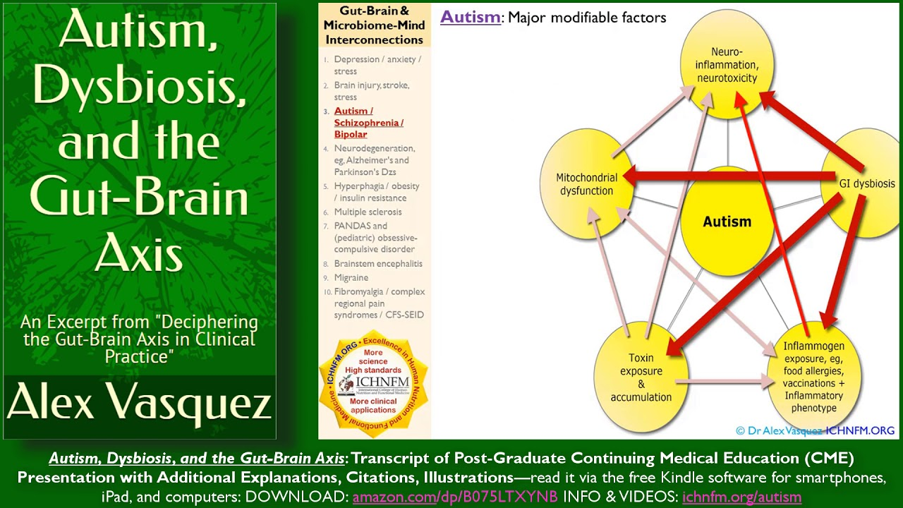 dysbiosis gut-brain axis