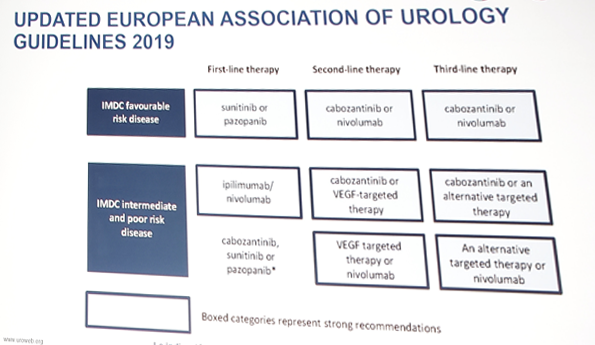 renal cancer guidelines eau medicamento para oxiurus