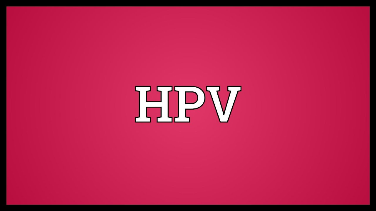 hpv licence means
