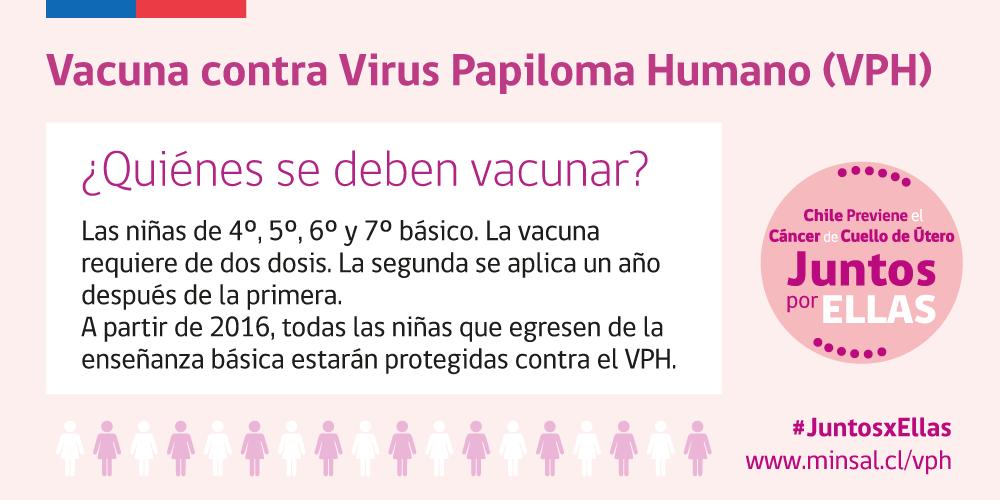 virus papiloma humano minsal cancer osos la copii