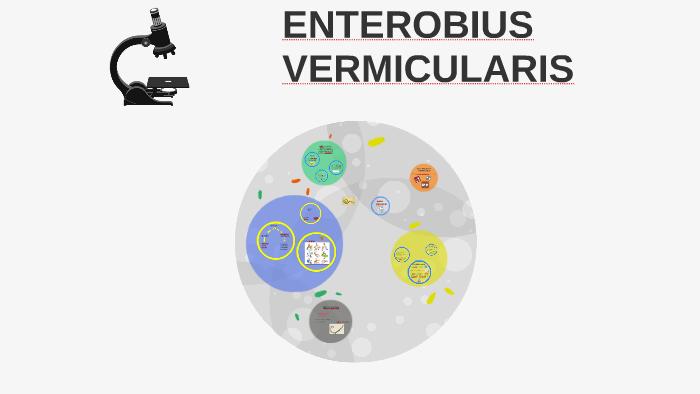 tratamiento de enterobiasis