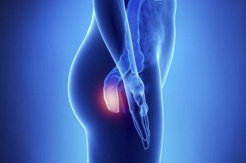 cancer genunchi simptome hpv utero sintomas