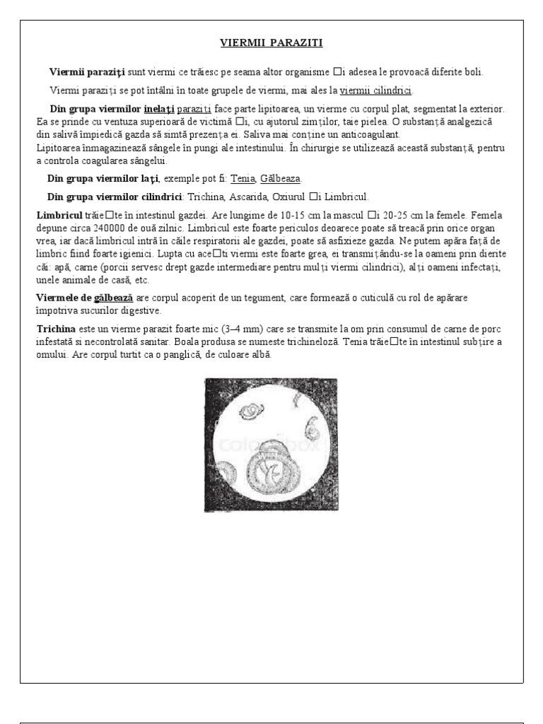 morte di papilloma virus papilloma cervical cancer
