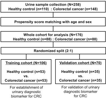 cancer colorectal urine