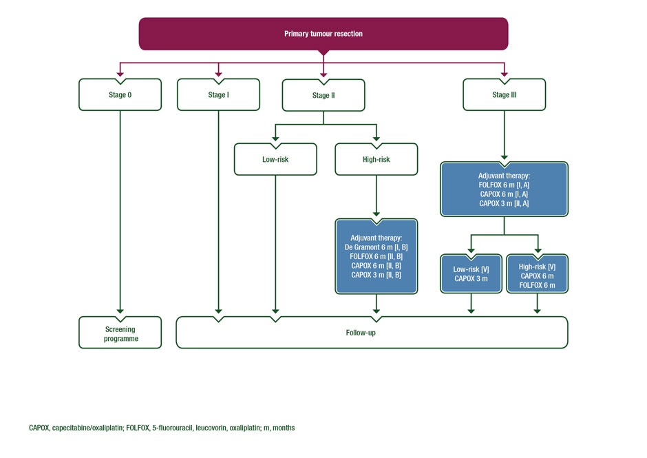 cancer colorectal guidelines oxiuros ciclo