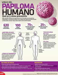 human papilloma virus infection que es