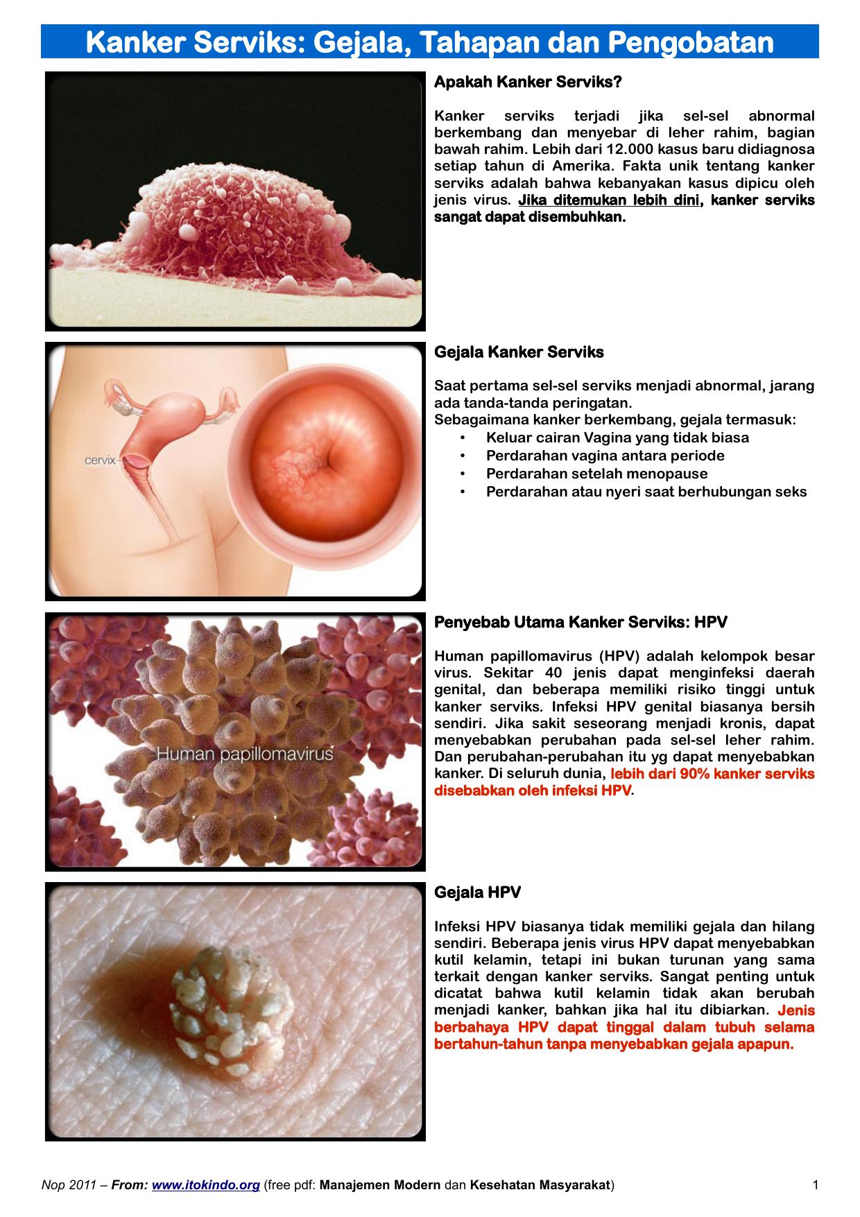 penyebab virus hpv adalah
