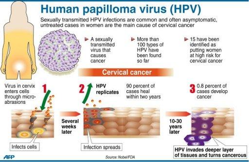 human papilloma virus linked to cancer papiloma krema u bih