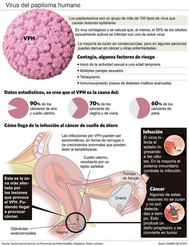 cancer hormonal therapy papilloma al labbro