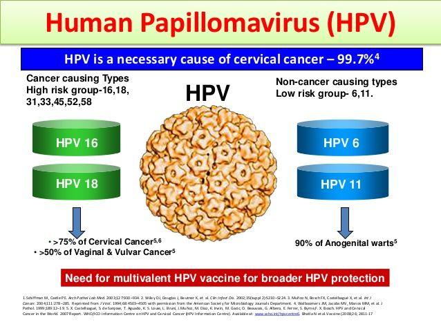 que es el virus del papiloma humano y sus sintomas human papillomavirus infections dangers