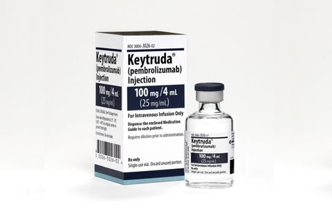 cervical cancer keytruda