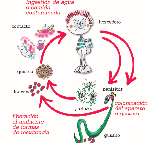 paraziti kod dece ishrana