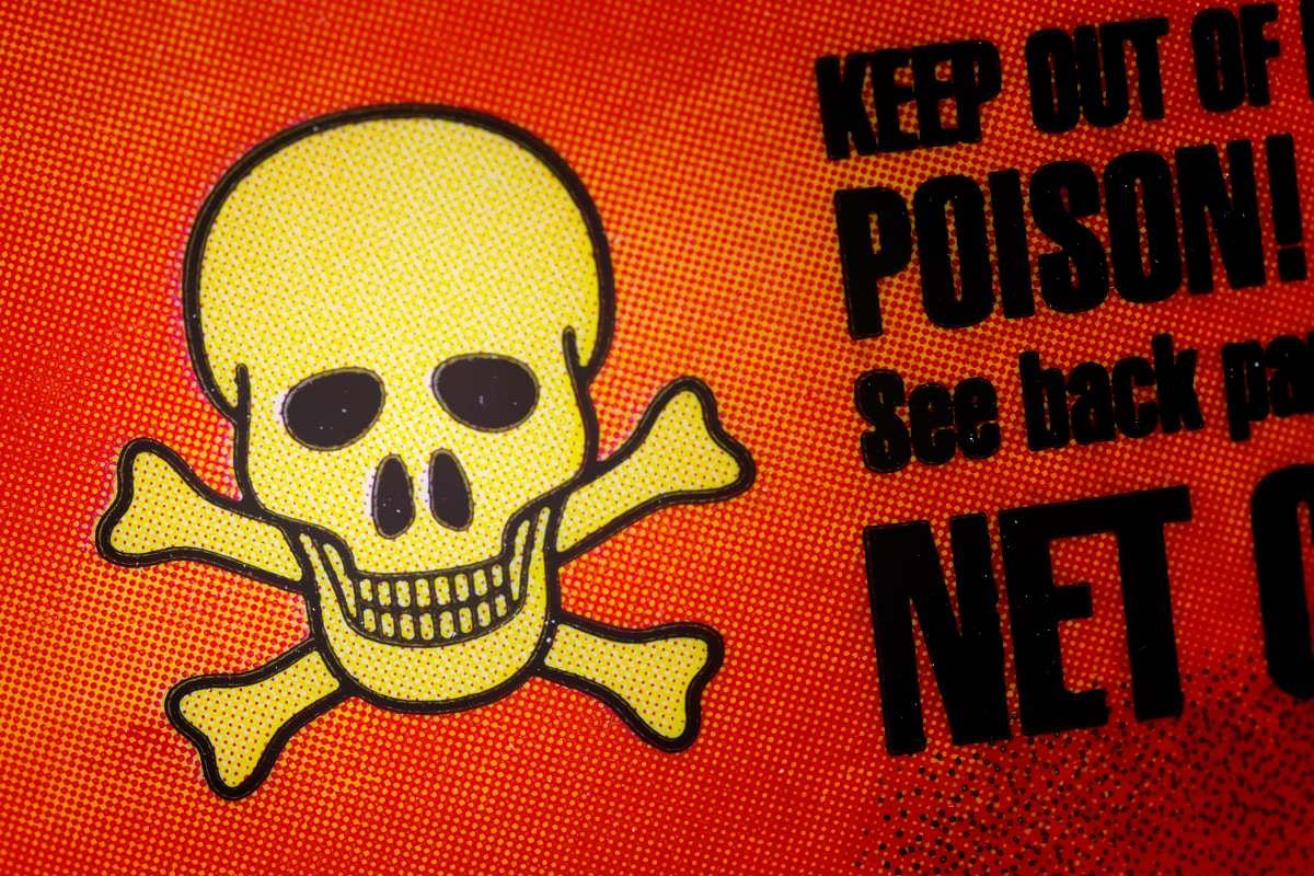 toxine botulique rat