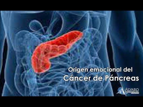 cancer de pancreas biodescodificacion rectal cancer with liver metastasis