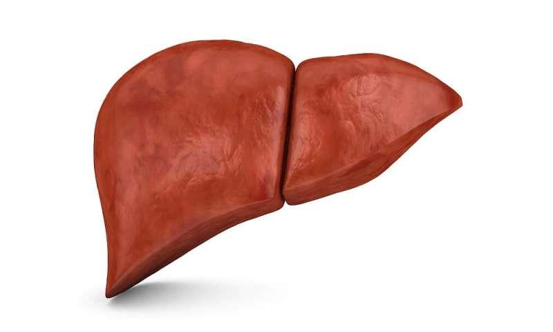 hepatic cancer and pregnancy medicamento para oxiurus