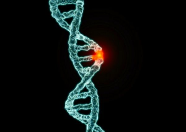 cancer de prostata histopatologia