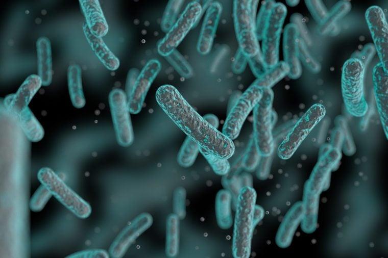 yoghurt bacteria human papillomavirus warts in mouth