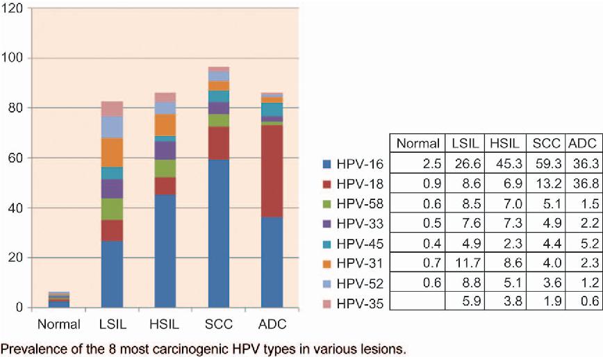 hpv warts urethra papiloma canino transmite humanos