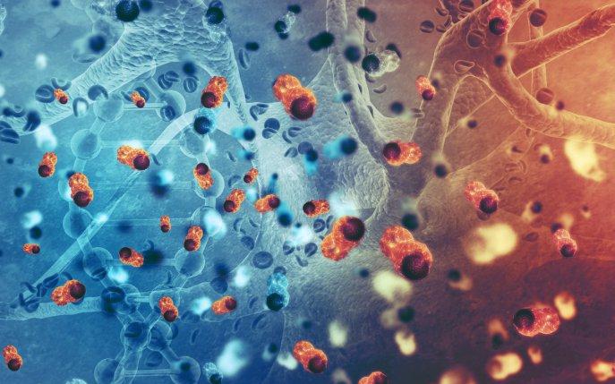cancer cerebral pediatrico vaccino papilloma uomo adulto