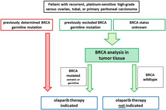 ovarian cancer treatment options