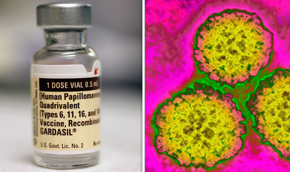 hpv virus causes warts hpv or herpes