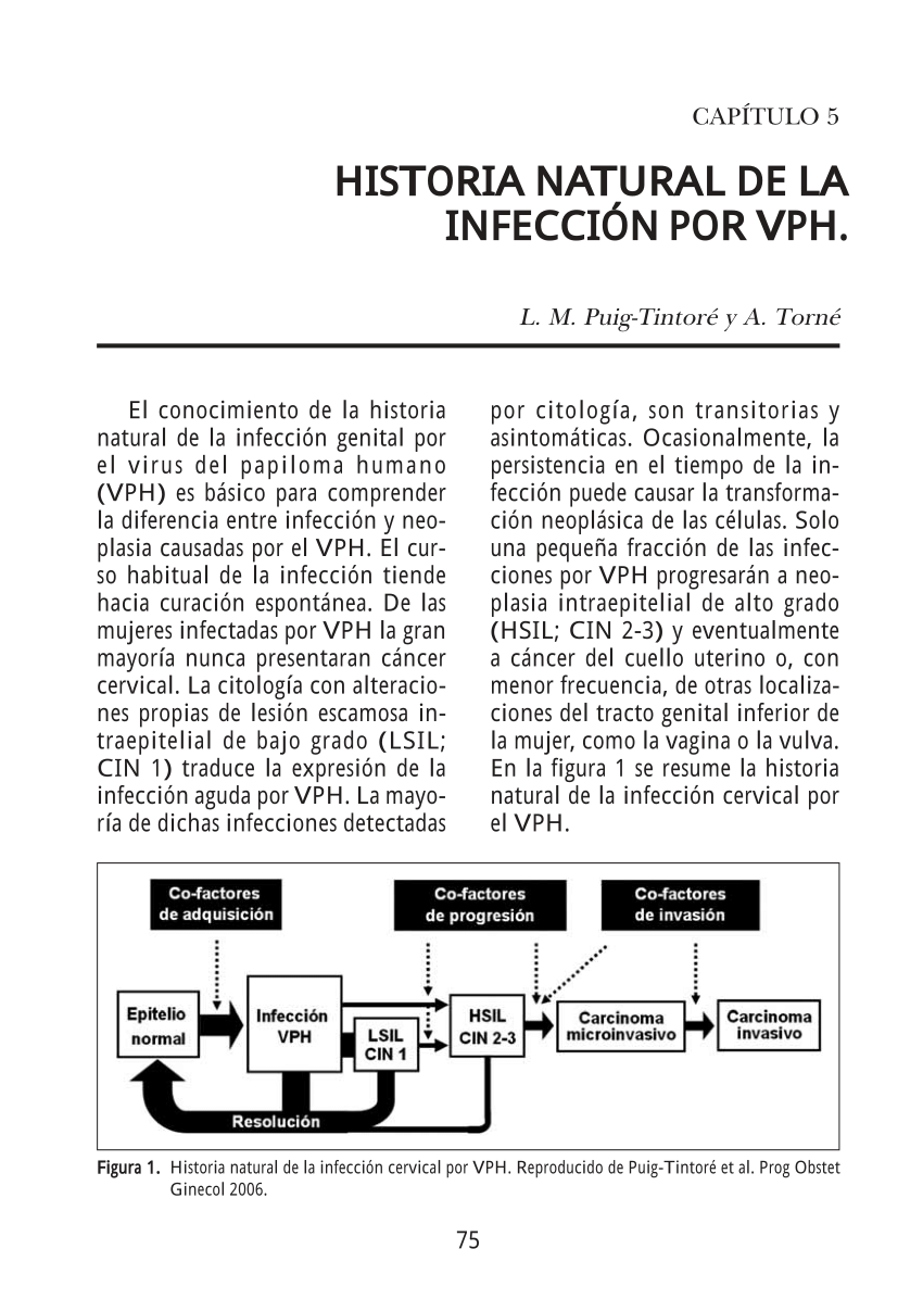 gardasil vaccine quebec maternal human papillomavirus