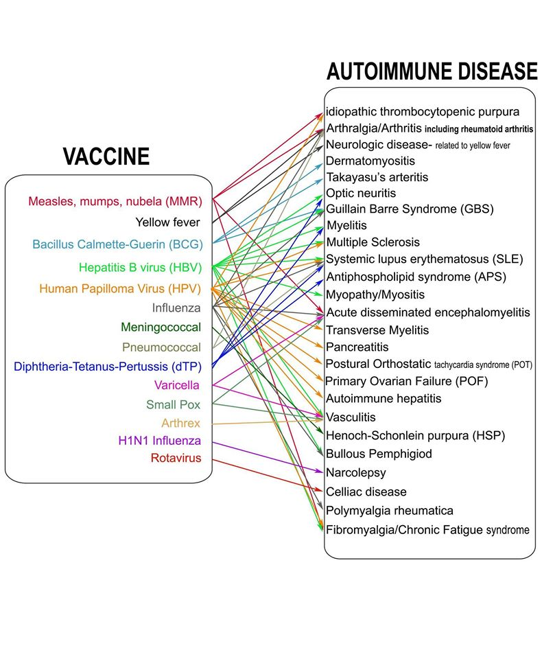on the relationship between human papillomavirus vaccine and autoimmune diseases