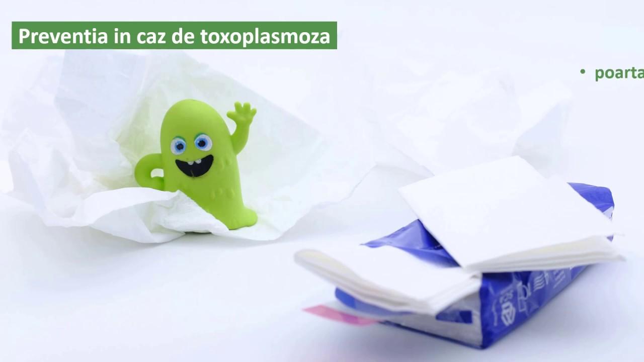 toxoplasmoza pret