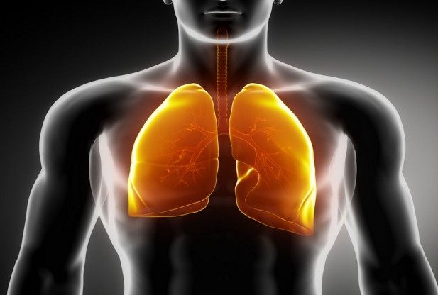 intestinal cancer and stem cells