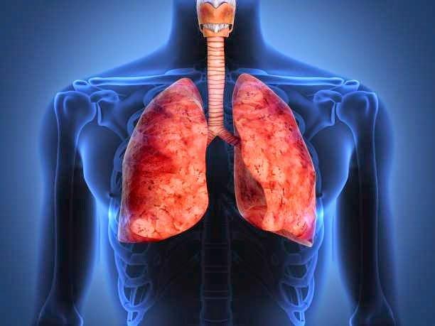 detoxifiere de nicotina virusi exemple