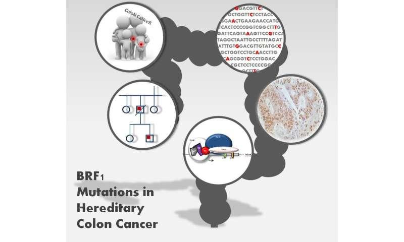 colon cancer genetic marker