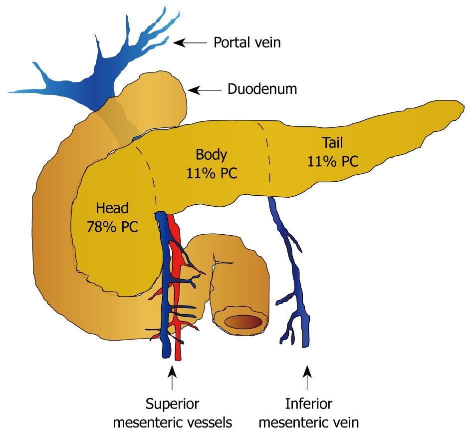 papillomavirus pas grave