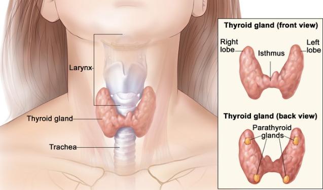 neuroendocrine cancer mood swings hpv nasopharyngeal carcinoma