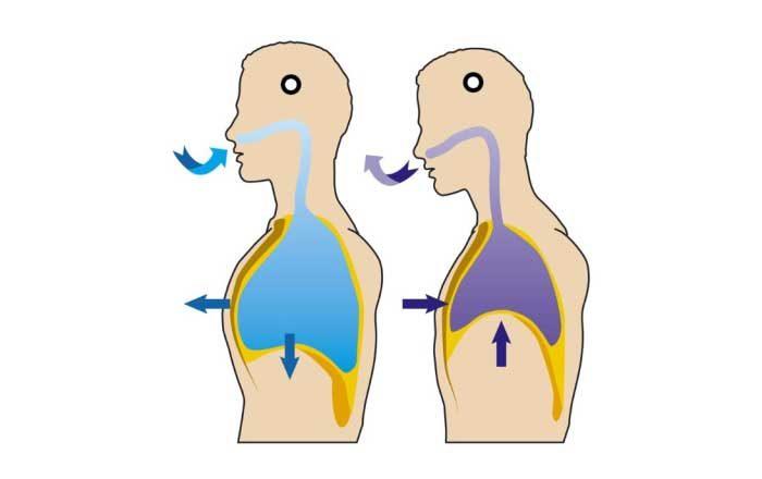 human papillomavirus infection saliva papillary thyroid cancer genes
