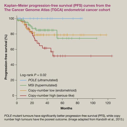 high risk papillomas