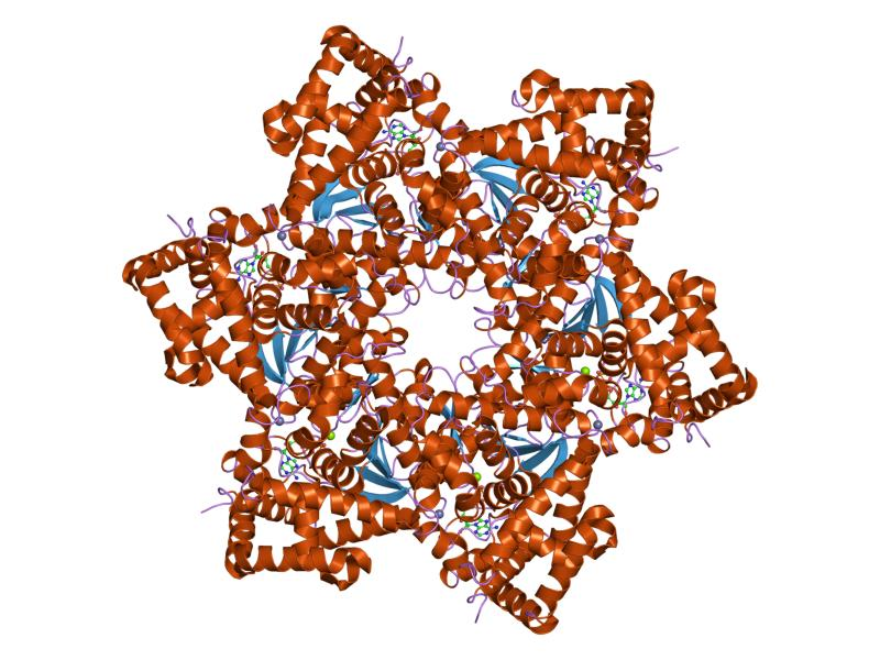 se poate vindeca cancerul de pancreas vaccino papilloma virus e pericoloso