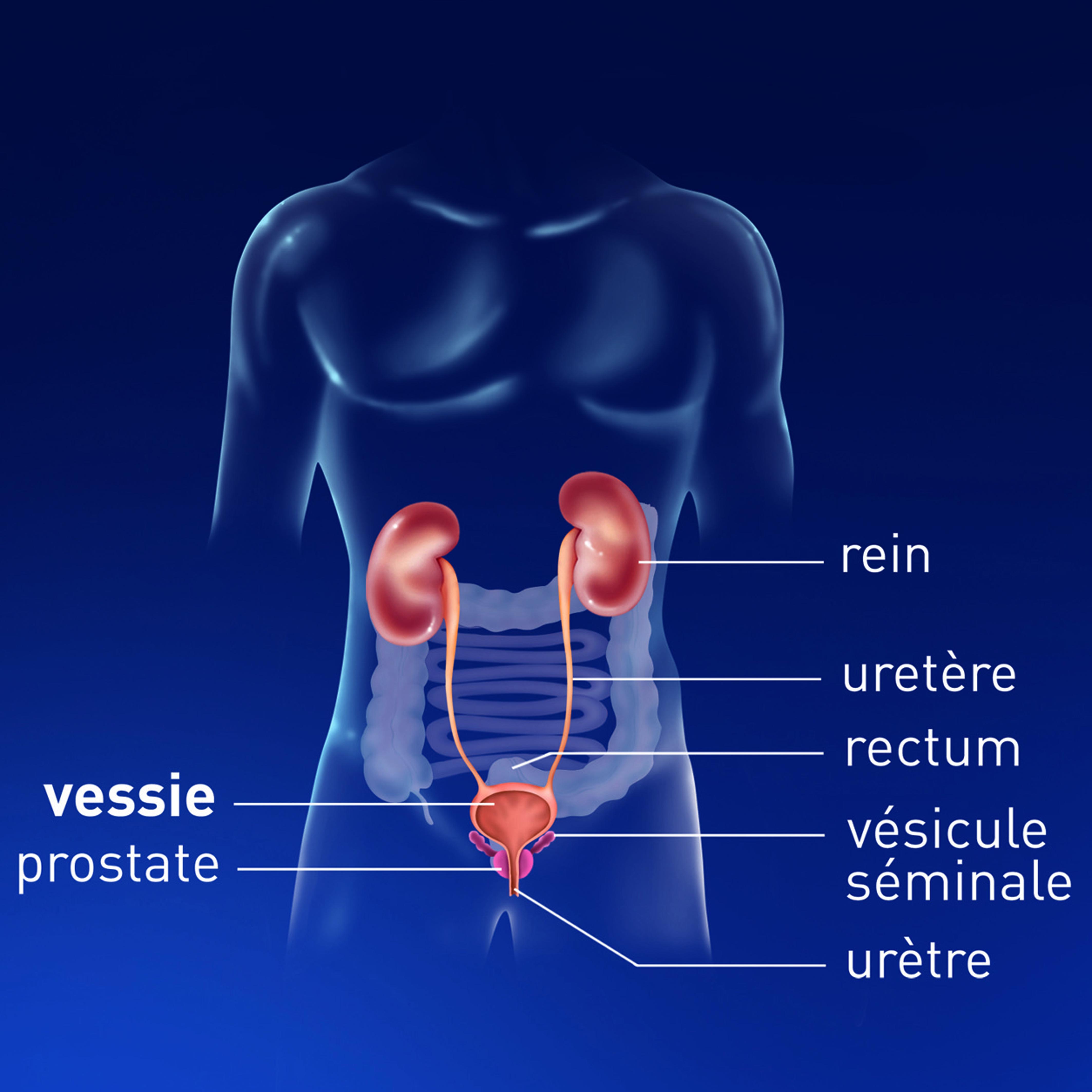 cancer pancreas ultima faza simptome