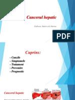 Cancerul Hepatic | Centru Oncologie Severin
