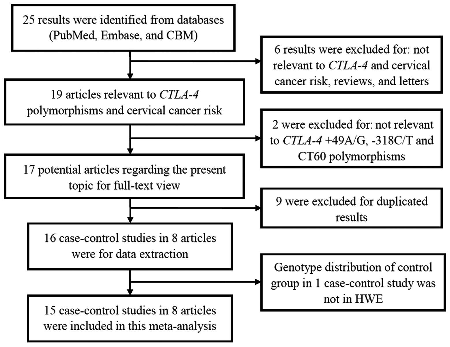 cervical cancer pathogenesis viermisori in scaun la adulti