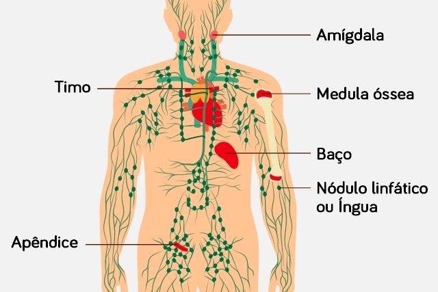 cancer pulmonar linfatico