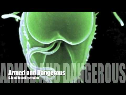Giardioza, črvi, ki živijo v človeku