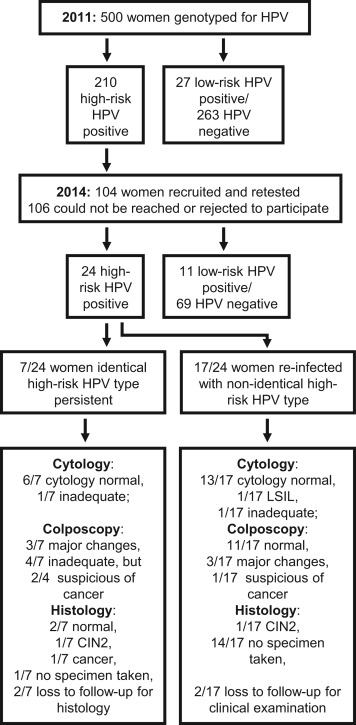 hpv high risk genotypes positive uterine cancer brain metastases