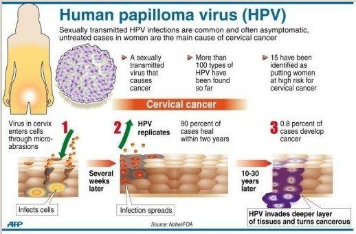 papilloma virus 45
