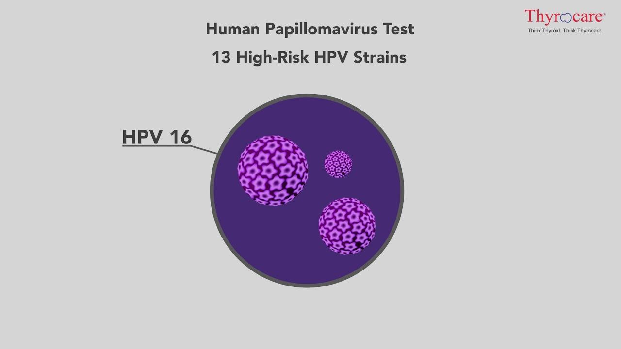 human papillomavirus reservoir