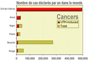 papillomavirus humain pourcentage human papillomavirus vaccination news